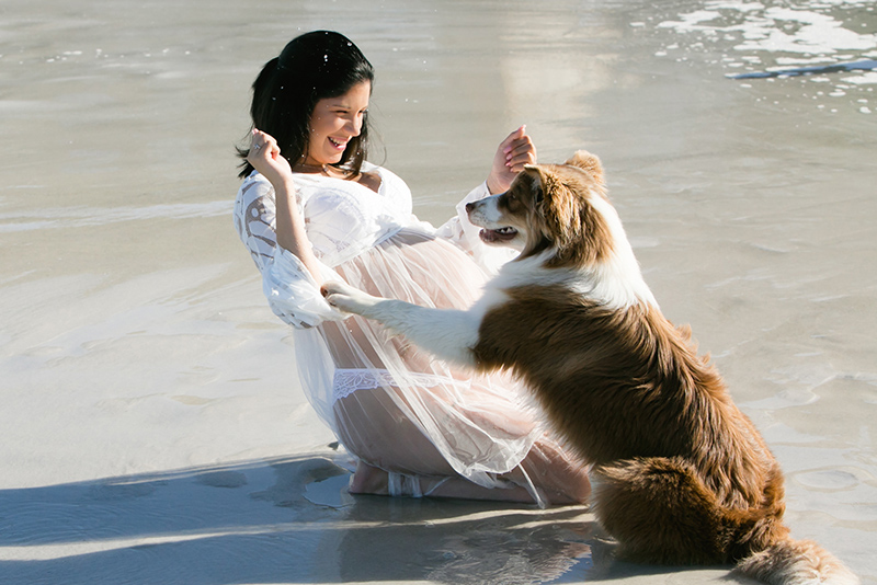 pregnant woman on beach with dog photo